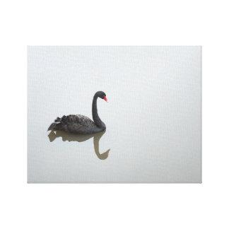 """Black Swan"" Canvas"