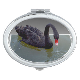 Black Swan In Pond, Oval Compact Mirror
