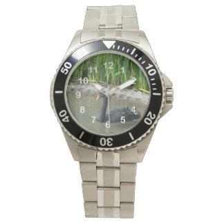 Black Swan Wrist Watches