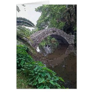 Black Swans Under Stone Bridge Cards