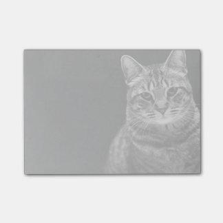 Black Tabby Kitten Post-it Notes