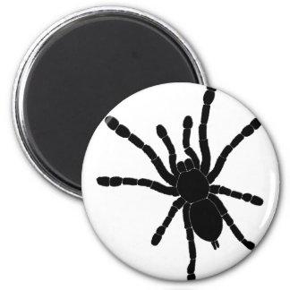 Black Tarantula Fridge Magnet