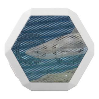 Black Tipped Shark Swimming Underwater White Boombot Rex Bluetooth Speaker