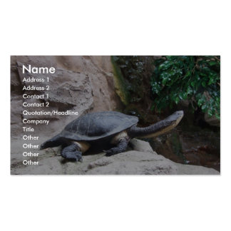 Black Turtle With Long Neck On The Rocks Business Cards