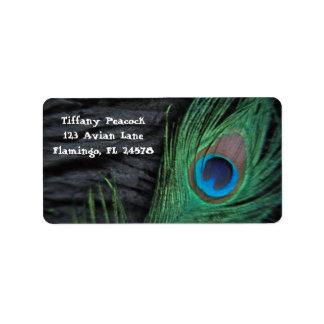 Black Velvet Peacock Feather Still Life Address Label