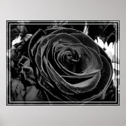Black velvet print