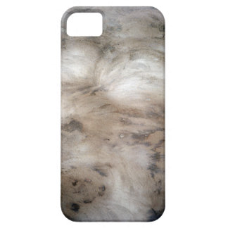 Black Wall iPhone 5 Covers