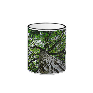 Black Walnut Trunk and Branches Coffee Mugs