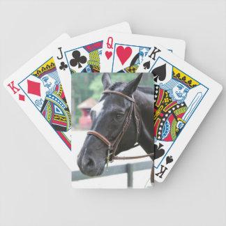 Black Warmblood Deck of Cards