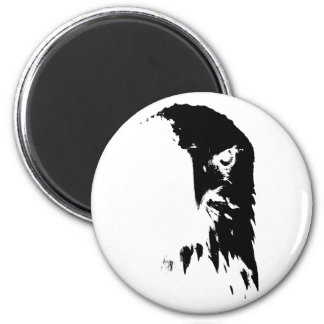 Black & White Bald Eagle Magnet