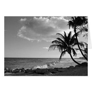 Black & White Barbados Palm Tree Beach - Blank Card