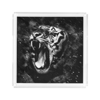 Black & White Beautiful Tiger Head Wildlife Acrylic Tray