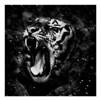 Black & White Beautiful Tiger Head Wildlife Poster
