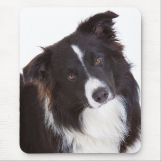 Black & White Border Collie Puppy Dog Mousepad