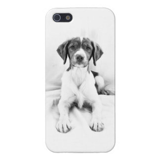 Black & White Brittany iPhone Case iPhone 5 Case
