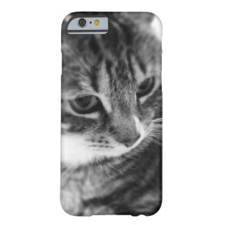 Black White Cat Barely There iPhone 6 Case