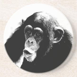 Black White Chimpanzee Coaster