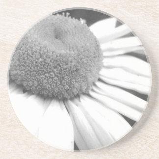 black & white daisy Coaster