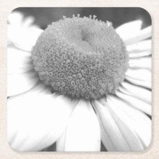 black & white daisy Coasters Square Paper Coaster