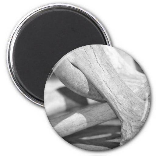Black & White Deer Sheds Magnets