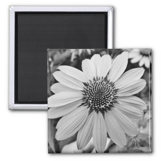 Black & White Flower Magnet