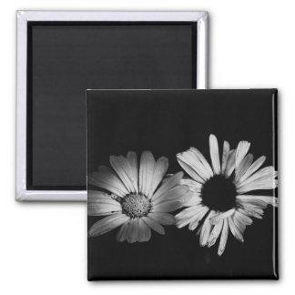 Black White Flowers Fridge Magnet