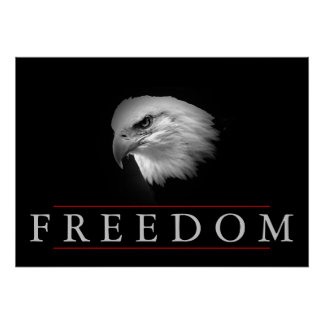 Black White Freedom Fearless Eagle Poster