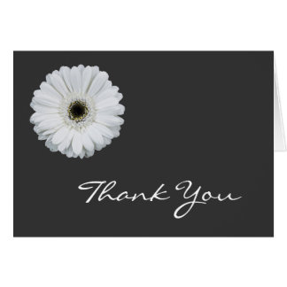 Black & White Gerbera Daisy Note Cards