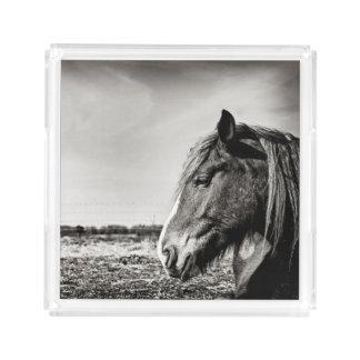 Black & White Horse Serving Tray