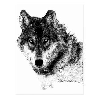 Black White Inspirational Wolf Eyes Postcard