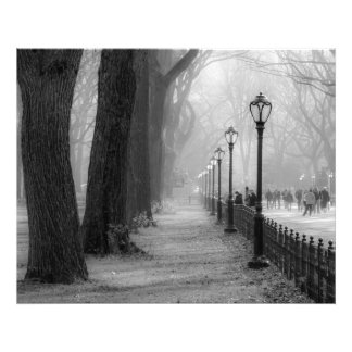 Black & White Landscape in Central Park Photograph