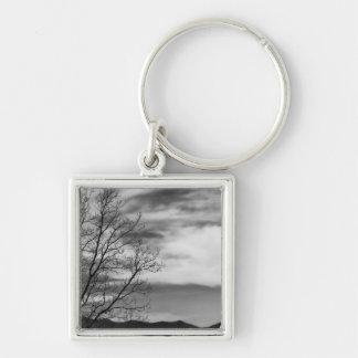 Black & White Landscape Nature Photo Silver-Colored Square Keychain