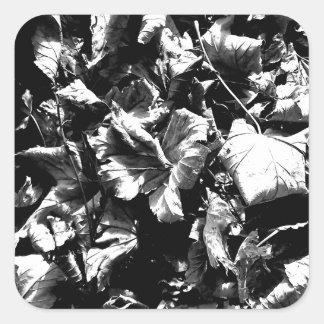 Black & White Leaves Square Sticker