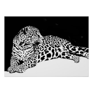 Black White Leopard Poster Pop Art Wild Animal