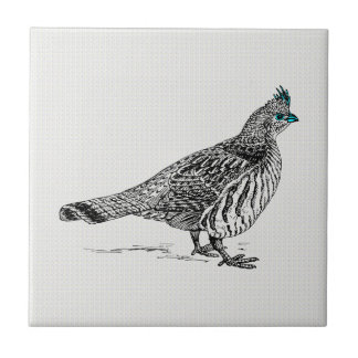 Black & White Line Drawing Wild Bird Ceramic Tile