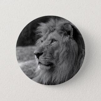 Black & White Lion - Wild Animal 6 Cm Round Badge