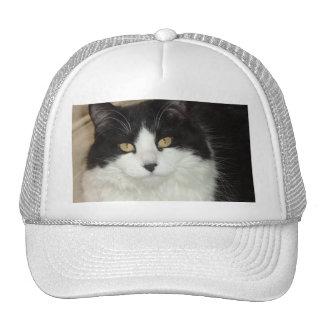 Black & White Longhaired Cat Closeup Cap