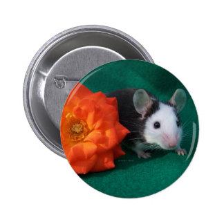 Black White Mouse and Orange tea rose Button