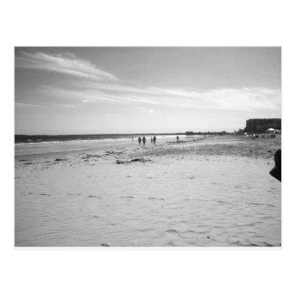 Black & White Old Orchard Beach Postcard
