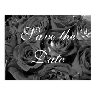 Black & White Photo Roses Save-the-date postcard