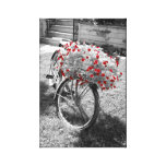 Black White Red Flowers Vintage Bicycle Summer Stretched Canvas Prints