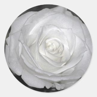 Black & White Rose Round Sticker