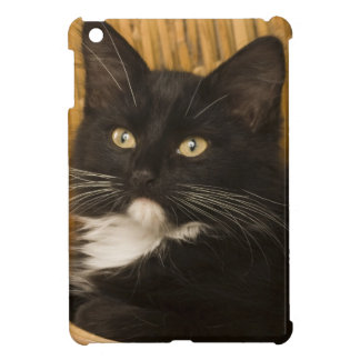 Black & white short-haired kitten on hamper lid, iPad mini covers