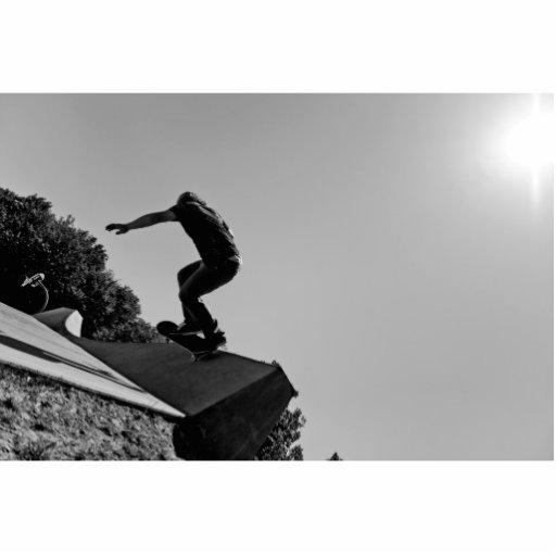 Black & White Skate Park Photo Sculptures