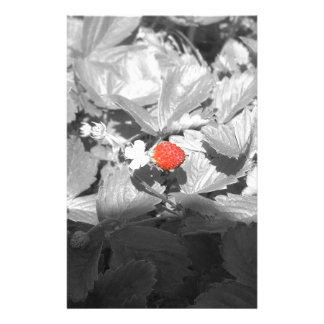 black white splash strawberry personalized stationery