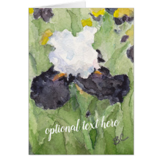 Black White Tall Bearded Iris Card