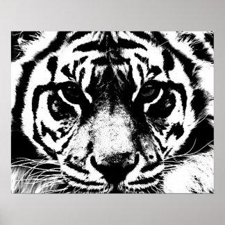 Black White Tiger Eyes Poster Print