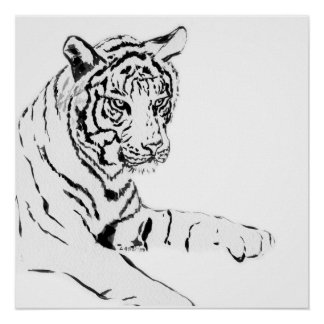 Black & White Tiger Sketch Poster
