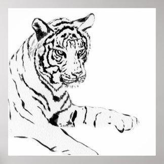 Black & White Tiger Sketch Poster