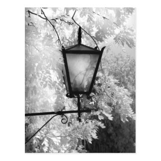 Black & White view of light fixture Postcard